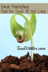email-newsletter-plant-the-seed